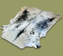 Nguni Hide.21 Black-White Speckle - A GRADE HIDE