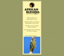 Bookmark Golden-tailed Woodpecker