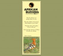 Bookmark African Hoopoe