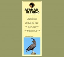 African Bookmark Long Crested Eagle