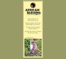 African Bookmark Samango Monkey