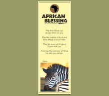 African Bookmark Zebra